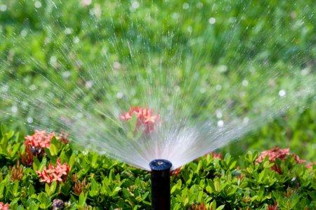 Houston Sprinkler and Irrigation